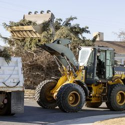 City workers use a front-end loader and dump truck to remove two large pine trees that were felled by high winds in the yard of Lyle Bair's home in Washington Terrace on Tuesday, Jan. 19, 2021.One of the trees fell on Bair's home, damaging the carport, a car and other items.