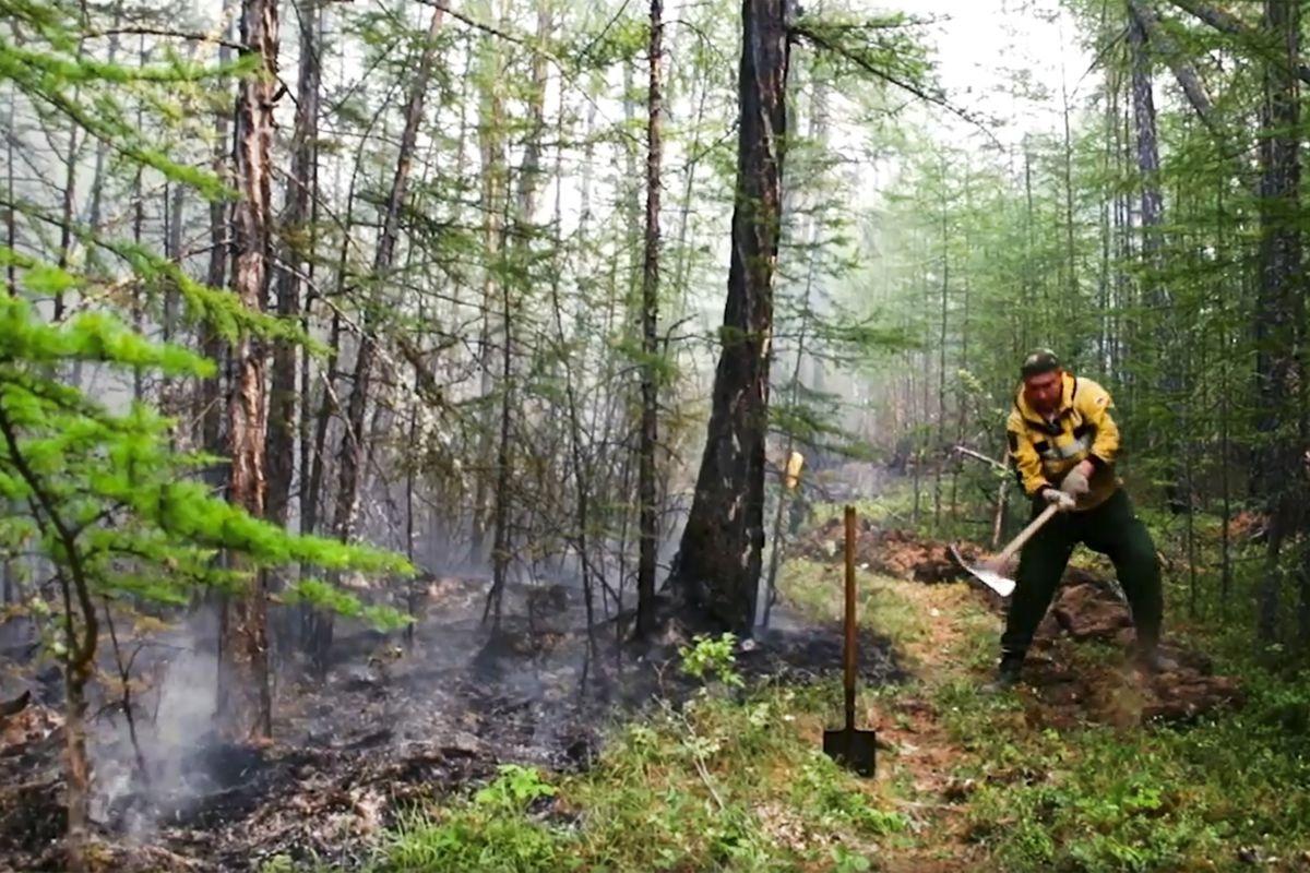 Photos: wildfires hit the Amazon, Brazil, Spain, France