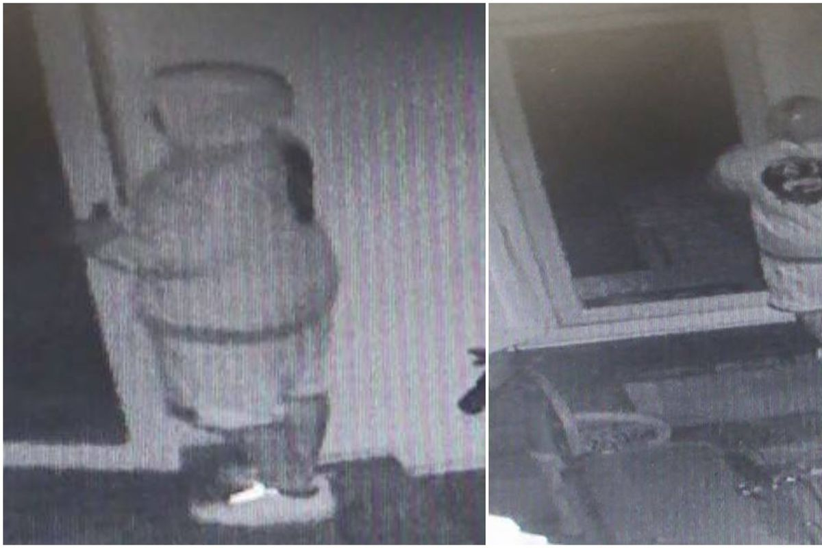 Police said someone tried to break into a home in Palos Park and may have stolen two birds.