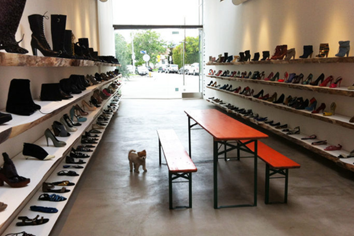 """Please note the puppy, via <a href=""""http://la.racked.com/archives/2012/05/01/kathryn_amberleighs_statement_shoes_strap_into_west_3rd.php#4f9fe3c685216d5b3e027047"""">Racked LA</a>"""