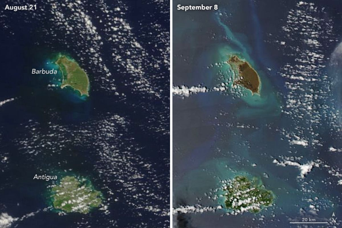 Jurassic Island Florida Keys