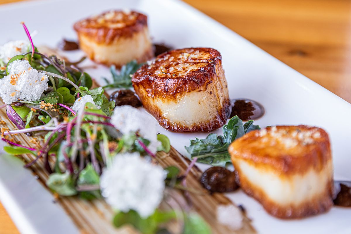 Seared scallops served on a white plate. A salad of greens is plated to the left.