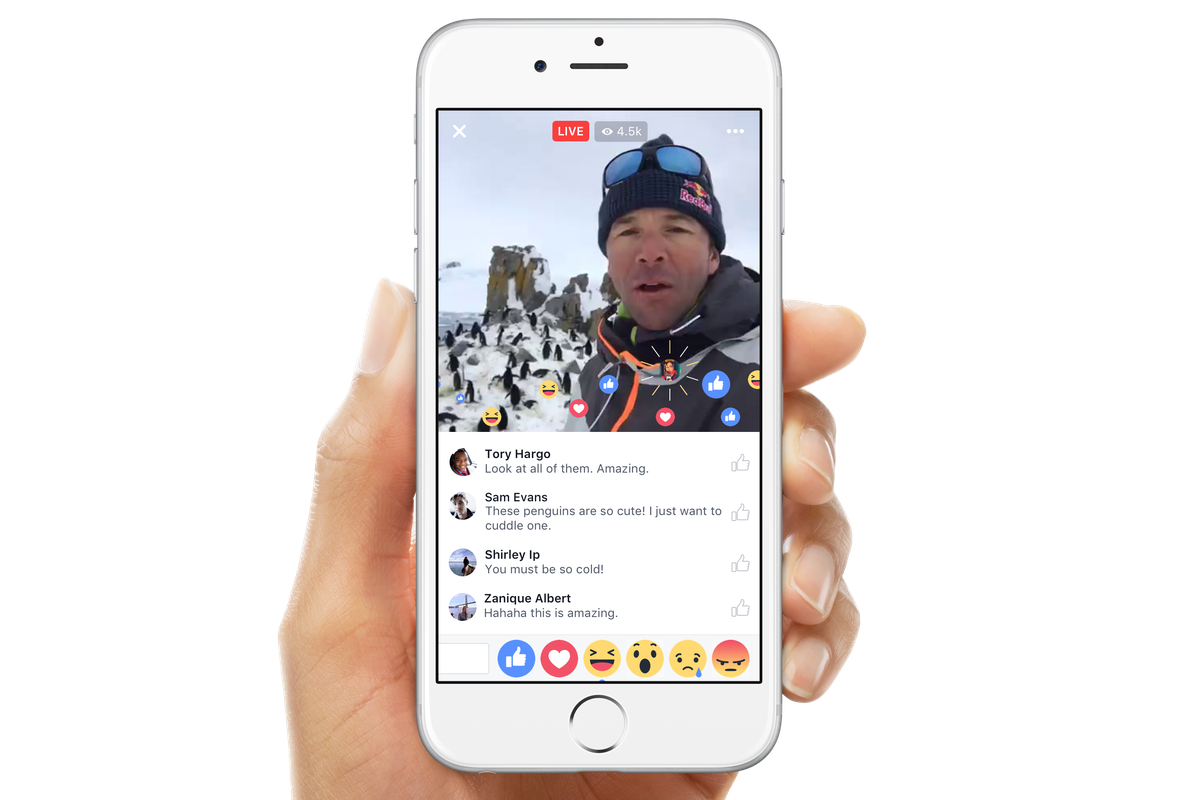 how to download video from someones facebook