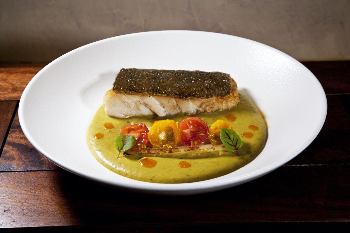seared fish