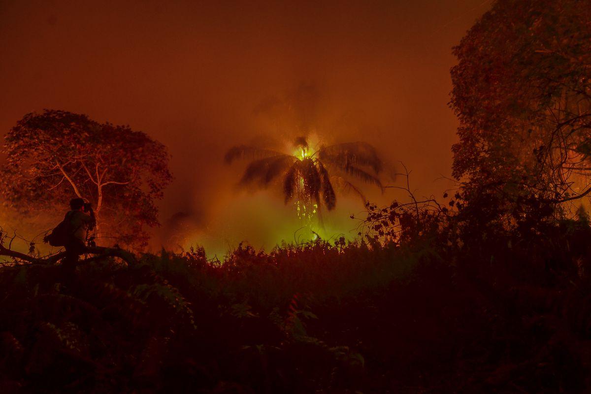 A fire burns through vegetation in Pekanbaru, Riau Province, Indonesia, on September 24, 2019.