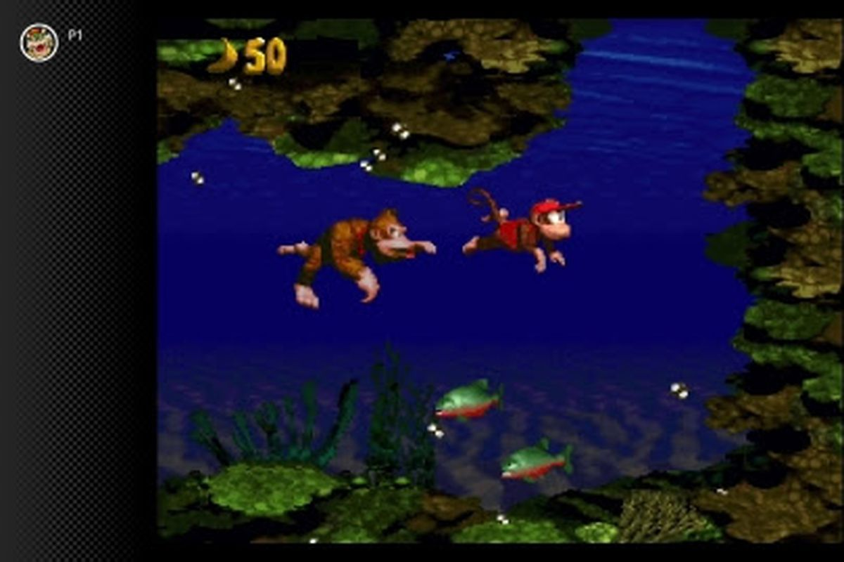 Screenshot of Donkey Kong and Diddy Kong in an underwater level of Donkey Kong Country