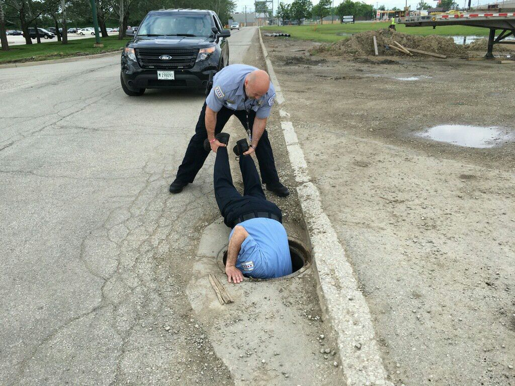 Chicago Police officers lower themselves in a Northwest Side sewer Saturday morning to rescue ducklings. | Chicago Police