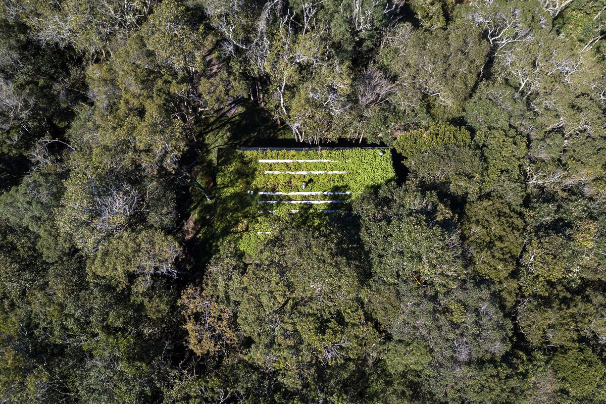 Aerial shot of house in woods