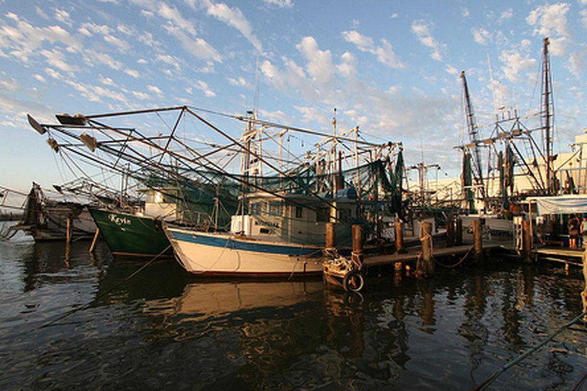 Shrimp boats in Biloxi, MS.