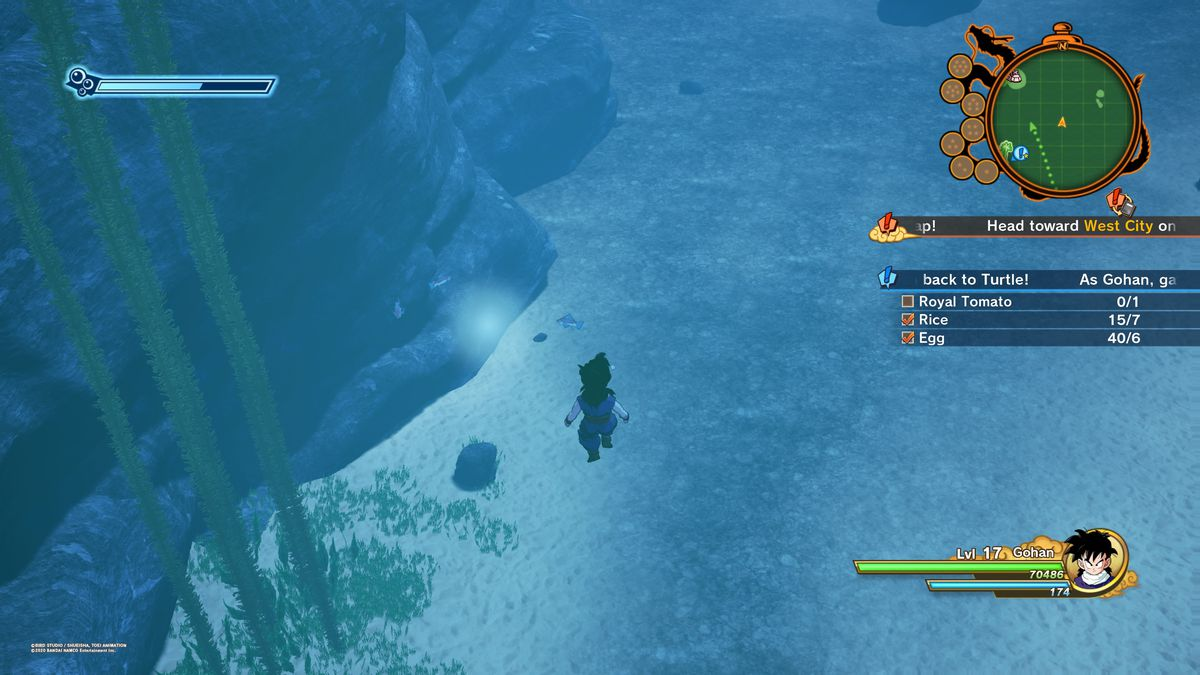 Dragon Ball Z Kakarot Tough Break for Turtle