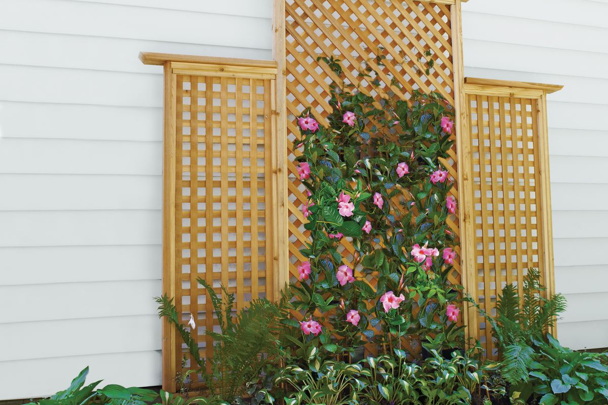 How To Build A Trellis This Old House