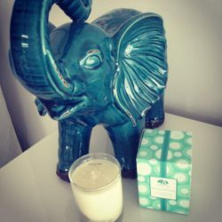 I have an obsession with the color teal and elephants. Tonight I'm enjoying my <strong>Origins Stress Diffusing Soy Wax</strong> candles, a gift from my girlfriend, Amy. It is definitely diffusing my mid-week stress. And the packaging is teal!