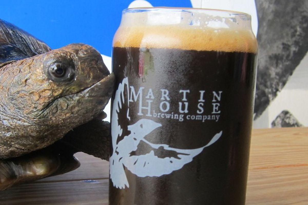 Turtles love beer, too.