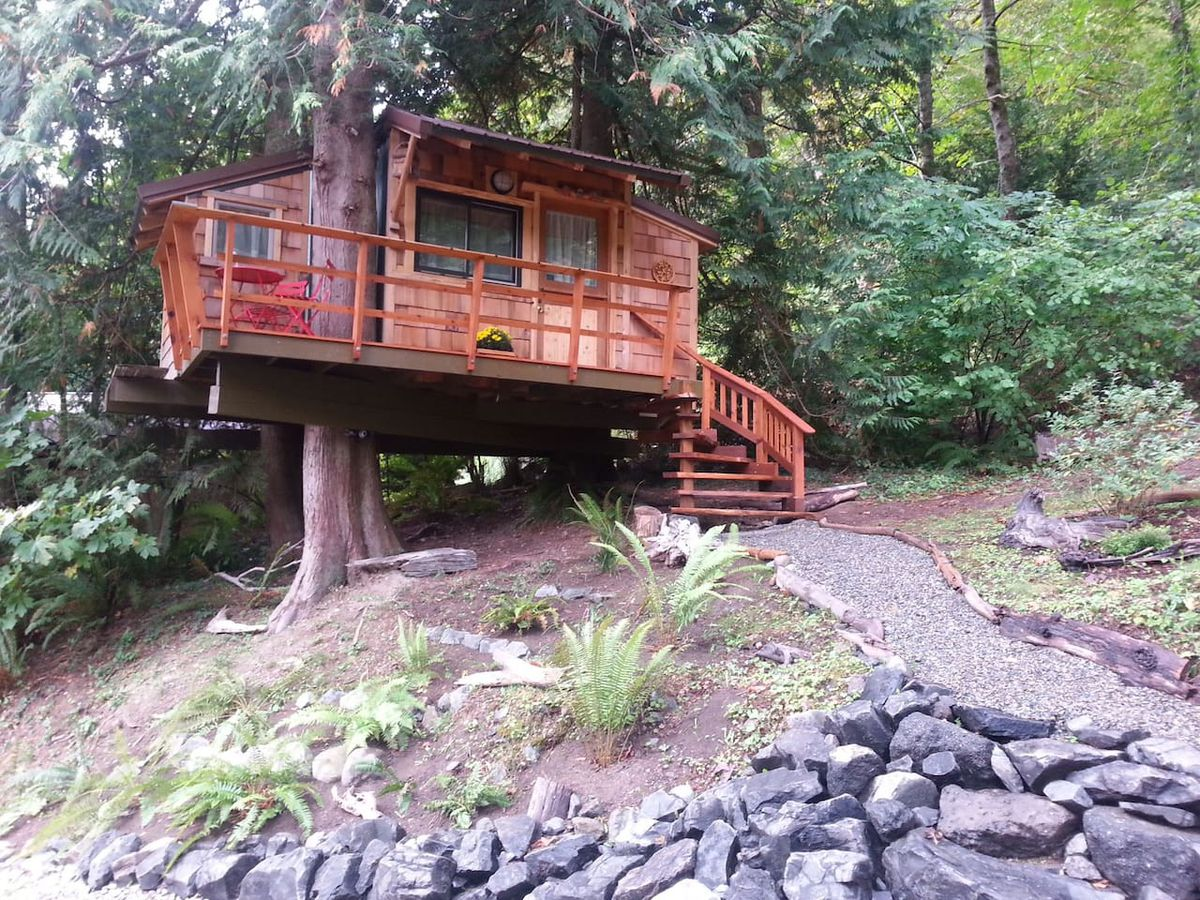 In the foreground is a path which is leading to a tree house. The tree house is attached to the trunk of a tree. The facade is wooden. There is a forest with many trees behind the tree house.