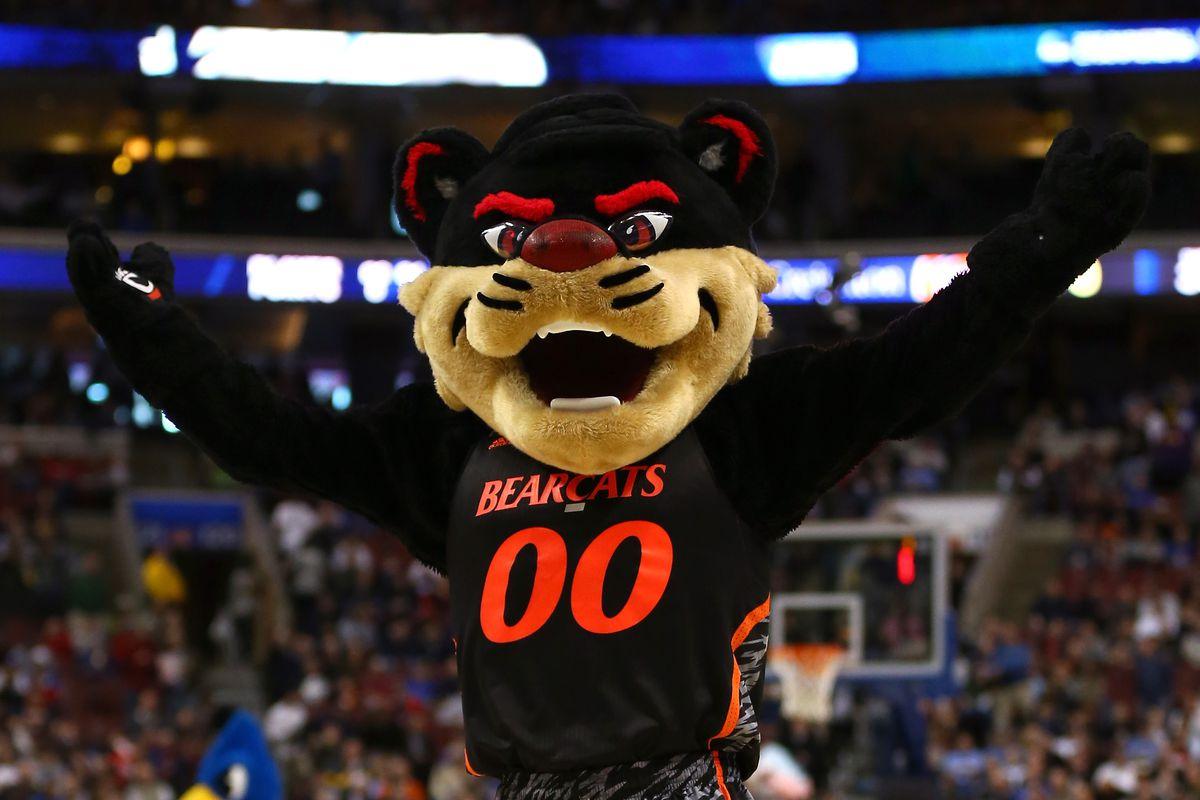 Usf Bulls Mascot
