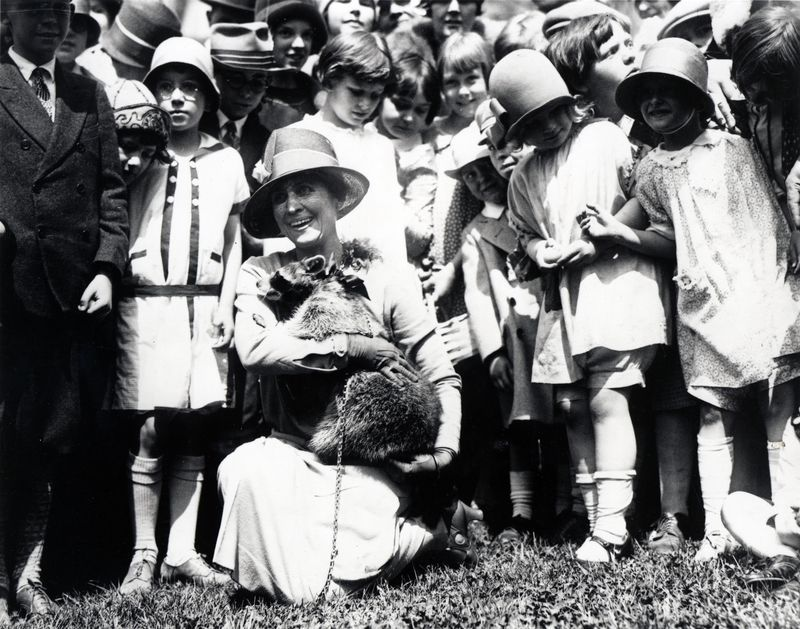First Lady Grace Coolidge brings pet Raccoon Rebecca to the 1927 Easter Egg Roll.