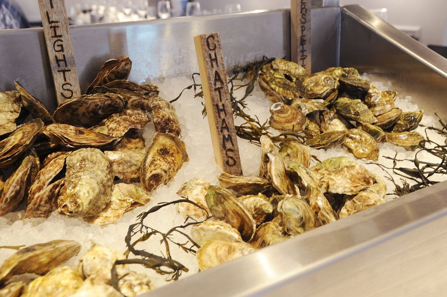 Your first look inside izzy 39 s fish oyster finally for Izzys fish and oyster