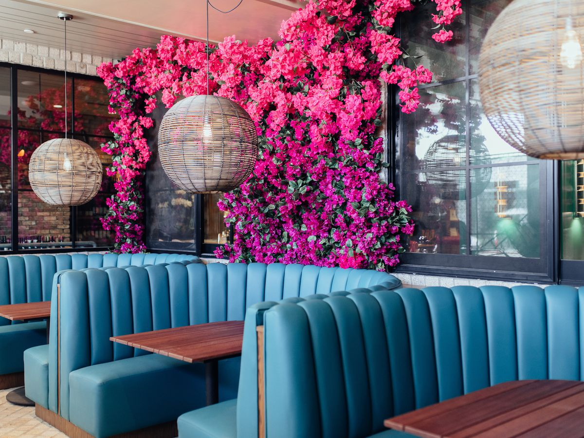 A pink wall of growing plants and light blue booths at a new restaurant.