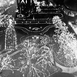 Christmas lights glow on Temple Square in December 1978.