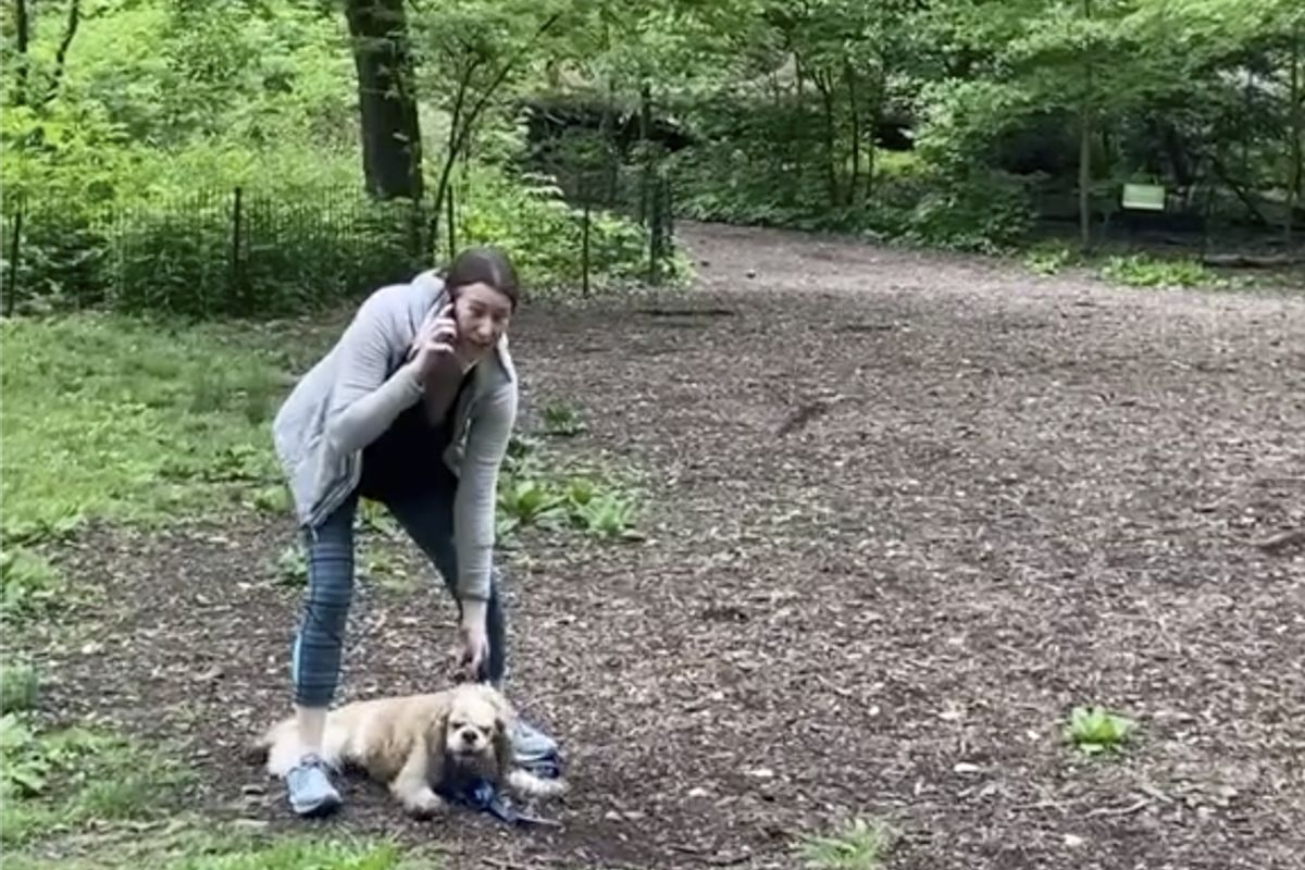 """Amy Cooper in New York's Central Park on Memorial Day. She called the police on a bird-watcher who had asked her to put a leash on her dog. She falsely claimed """"an African American man"""" was threatening her."""
