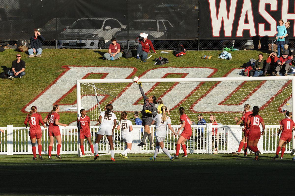 Photo Courtesy WSU Athletics Communication