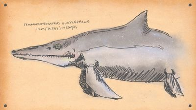 EvilDolphin - Here are 9 of the most badass animals ever to swim