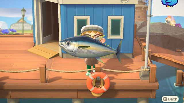 Catching a Tuna in Animal Crossing: New Horizons