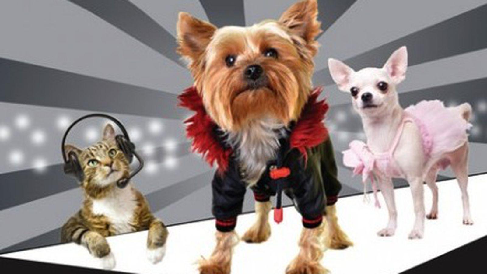 Show Dogs Sf Menu