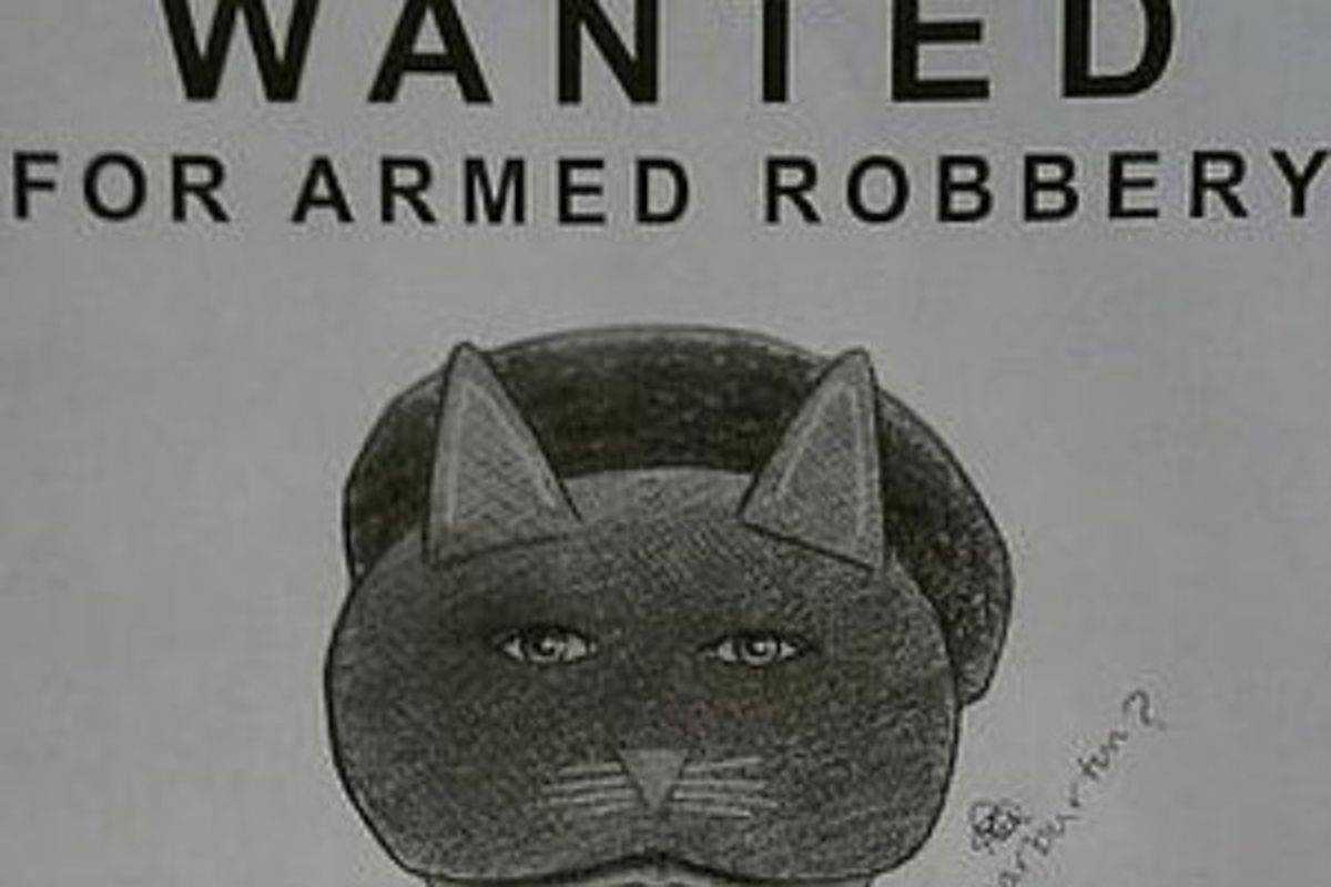"""Where's Batman when you need him via <a href=""""http://www.nypost.com/p/news/local/holy_masquerade_cat_woman_strikes_ogTPl8uVxHCEpDkOPTHKxH"""">New York Post</a>"""