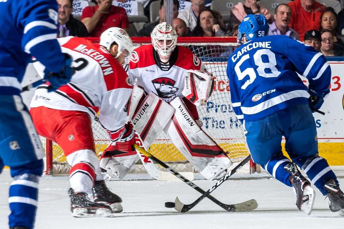Carcone has the game of his life as Toronto Marlies tie playoff series