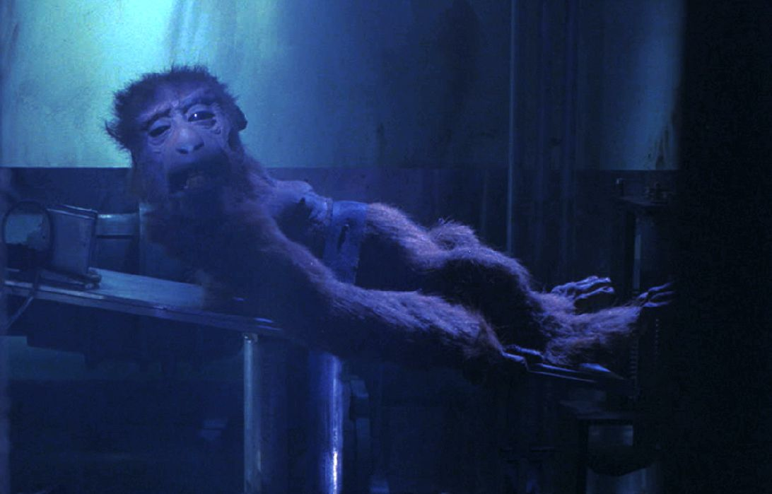 A miserable-looking stop-motion monkey strapped to a surgical table stares bleakly at the camera in Mad God