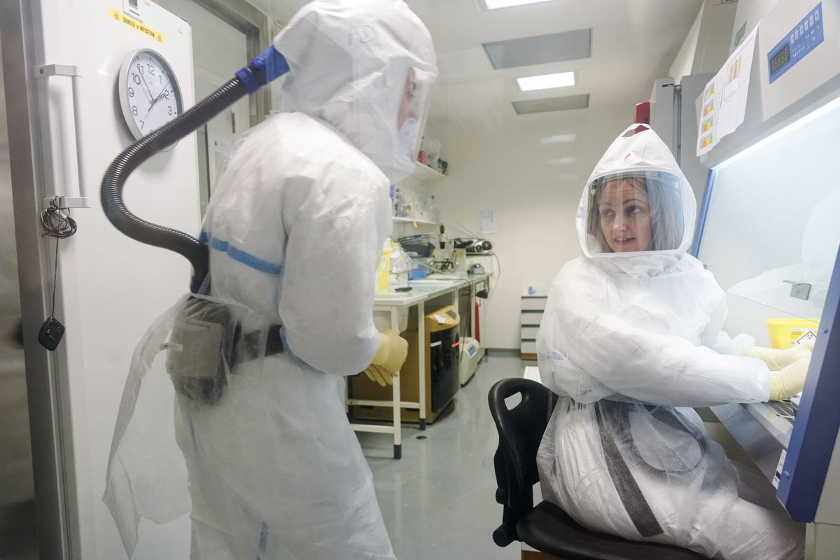 A CNRS technician and virologist work in a laboratory.
