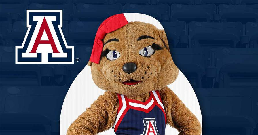 Arizona fans can buy cardboard cutouts to support football team, athletic department
