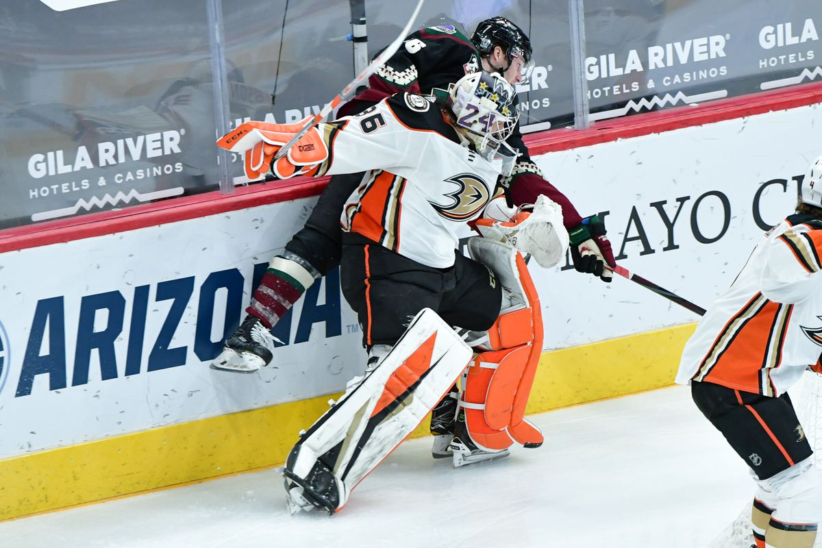 Anaheim Ducks goaltender John Gibson (36) checks Arizona Coyotes right wing Christian Fischer (36) during the second period at Gila River Arena.