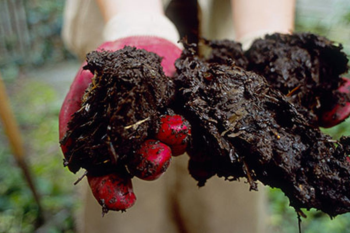5 Steps To Quick Compost This Old House