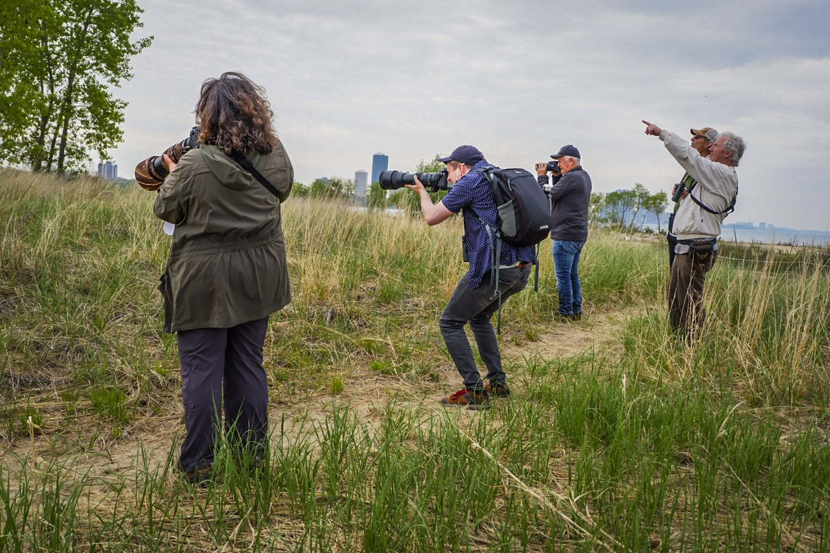Tamima Itani and other bird watchers at Montrose looking through their binoculars or snapping photos of birds in trees on Thursday, May 20.