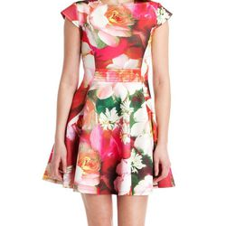 """Roziey Dress, <a href=""""http://www.tedbaker-london.com/store/womens/rose-on-canvas-print-dress-GB81-WS4W-ROZIEY-56.html#thumb"""">Ted Baker</a>, $275"""