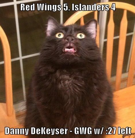 2016-17 Re-Cats Islanders Red wings