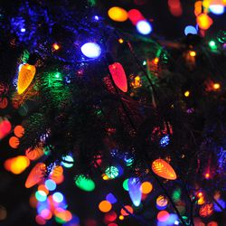 Thousands of lights adorn Chicago's official Christmas tree in Millennium Park. | Victor Hilitski/For the Sun-Times