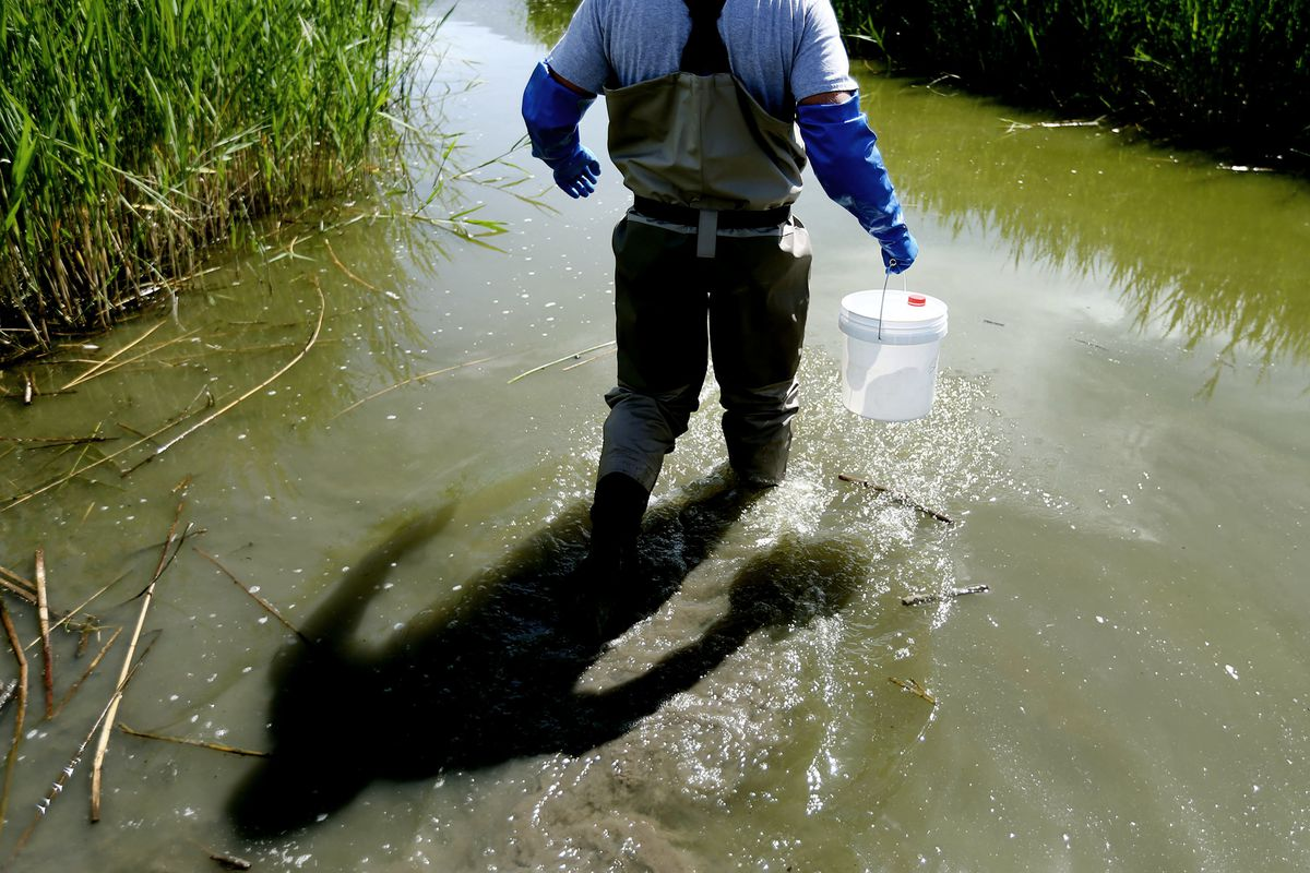 Trevor Gruwell, water quality technician with the Utah Department of Environmental Quality's Division of Water Quality, collects water samples from Utah Lake in Spanish Fork on Wednesday, June 6, 2018.