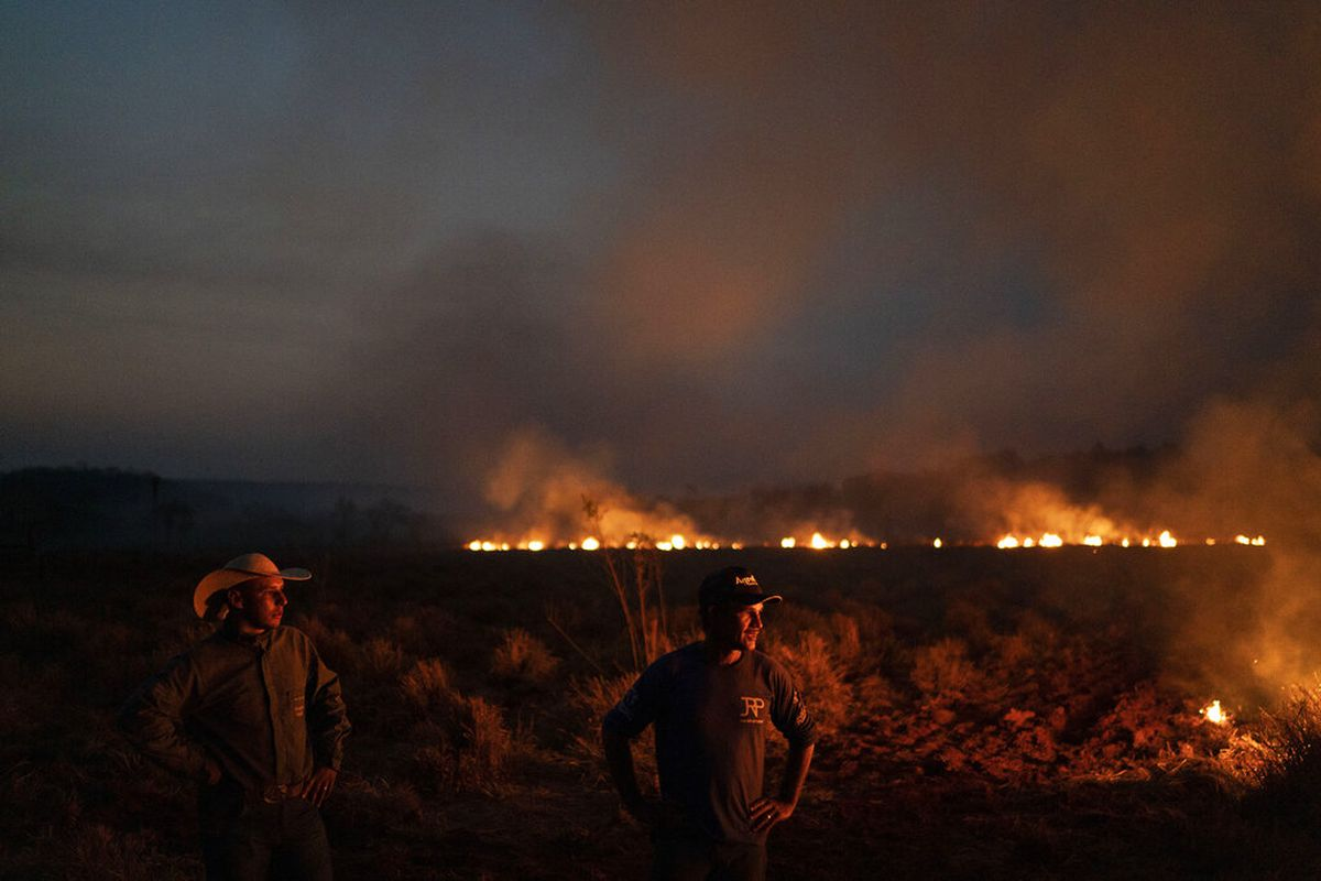 Earth Alliance fund backed by Leo DiCaprio pledges $5M to fight Amazon fires