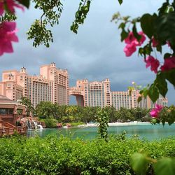 Resorts often charge a resort fee on top of the room rate.