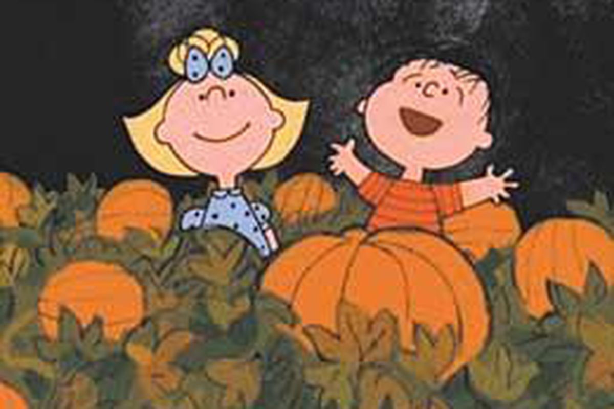 Sally and Linus anticipate the Great Pumpkin's arrival at 7 p.m. on Ch. 4.