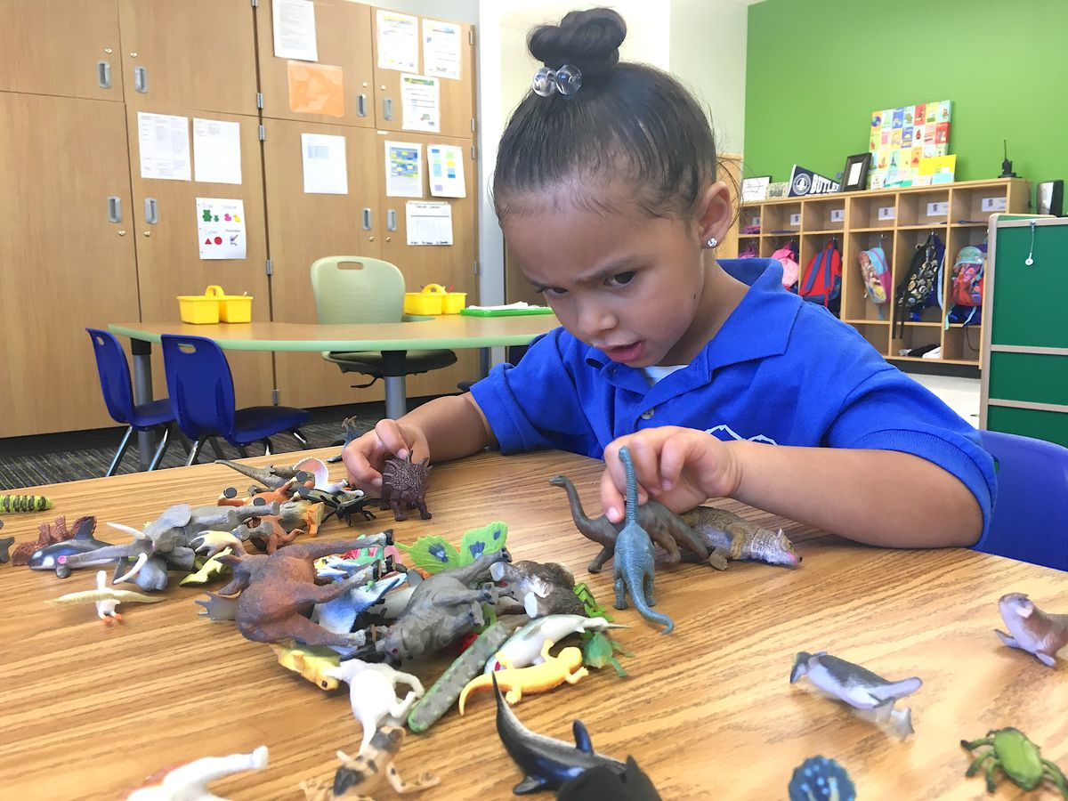 A preschooler at KIPP Northeast Elementary School plays with dinosaurs.