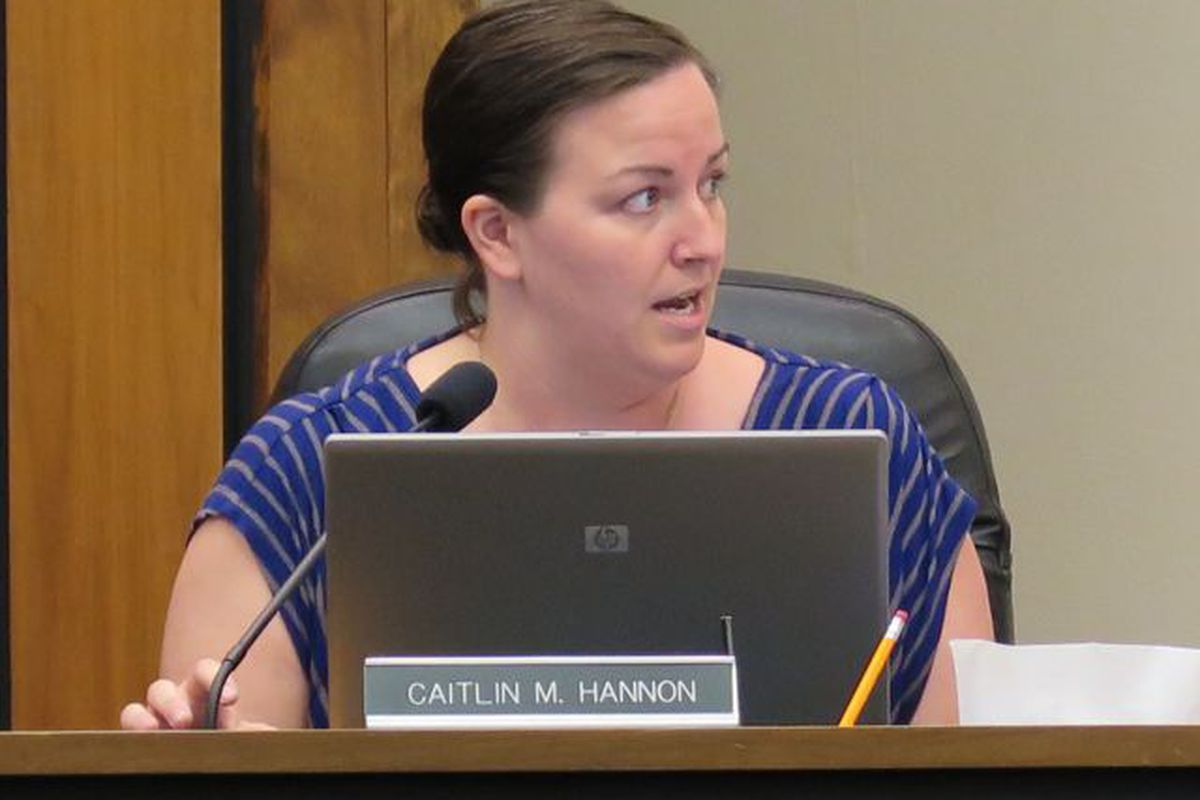 Union leaders and fellow board members questioned a plan for overhauling teacher pay proposed by board member Caitlin Hannon at Tuesday's meeting.