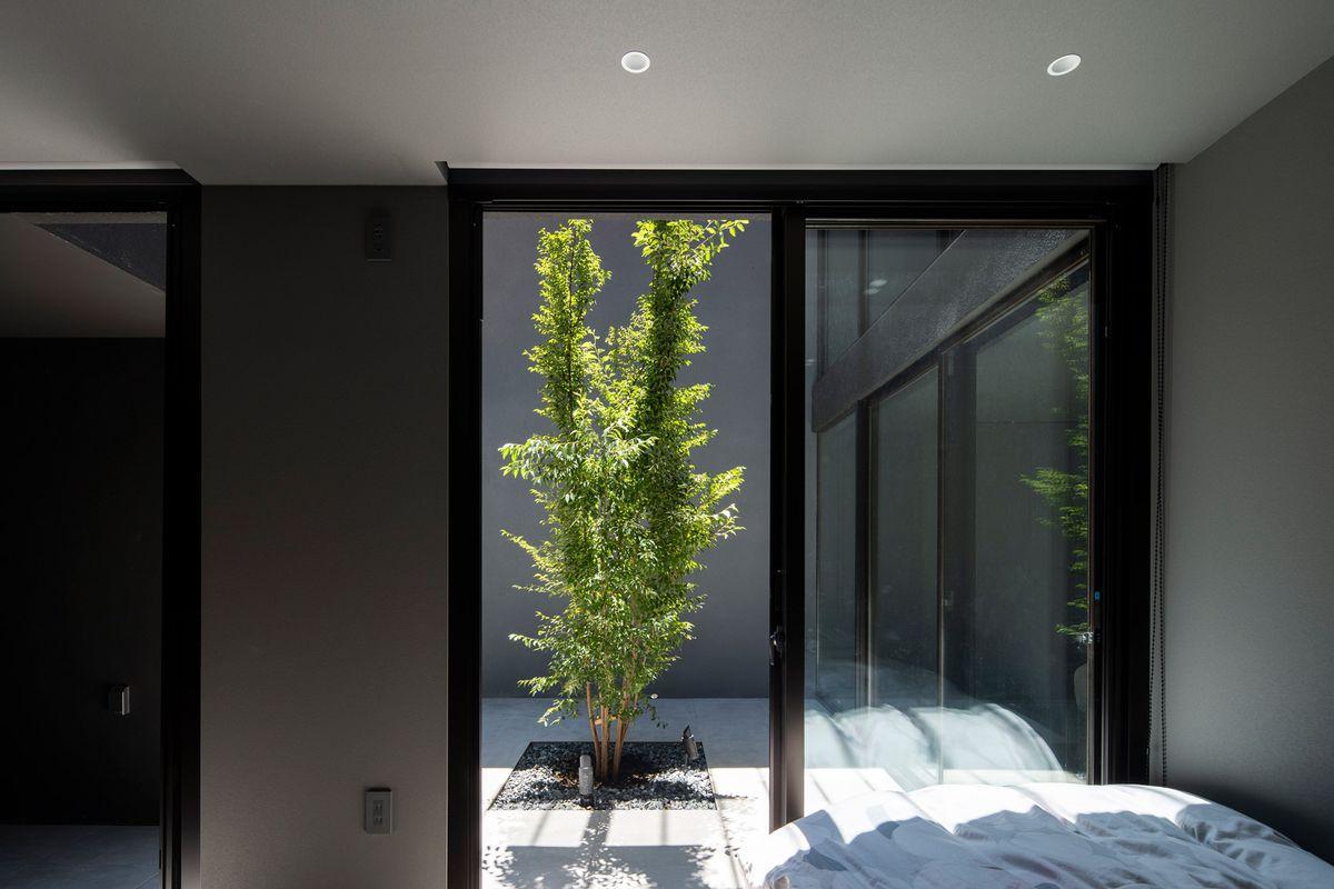 Bedroom door facing courtyard with tree.