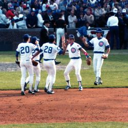 Cubs players celebrate the Game 2 win on October 3. From left, Bob Dernier, Davey Lopes (partially obscured), Henry Cotto, Larry Bowa, Ryne Sandberg