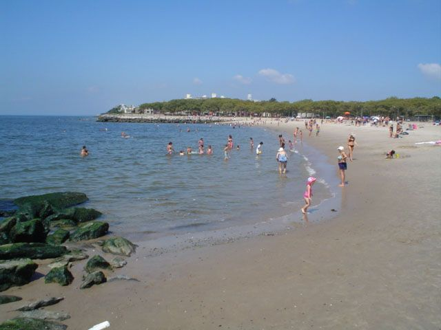 A sandy beach along a body of water. There are people in the water and on the sand. In the distance are trees.