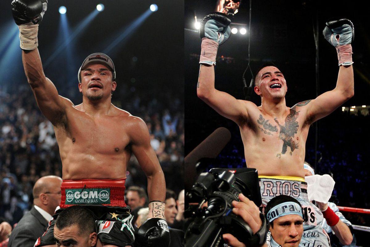 Marquez Boxer Wallpaper