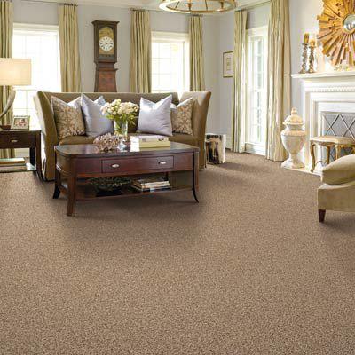 Polyester carpet in living room.